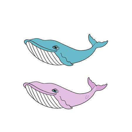 Set of Little Blue and Pink Whales, gender reveal party invitation, vector illustration isolated on white background, baby shower decor Illustration