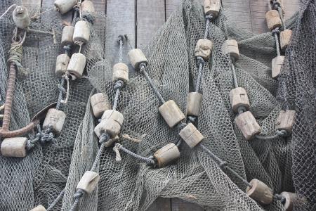trawl: trawl