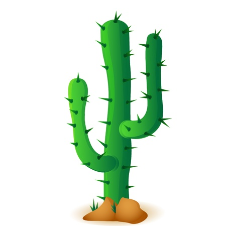 west: cactus isolated on white background