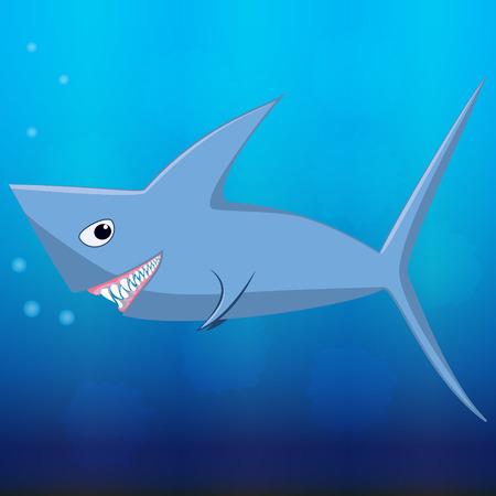 Shark in the blue sea