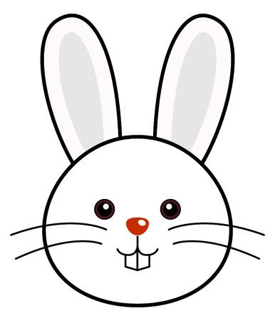 cute rabbit: Lindo conejo  Vectores