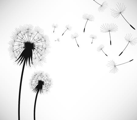 blowing dandelion: Tarassaco fiore di colpo di vento Vettoriali