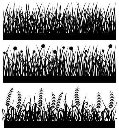 wild grass: Silueta de flor de planta de hierba Vectores