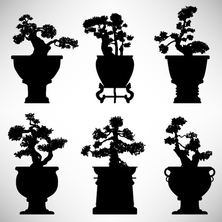 japanese flower: Bonsai Tree Plant Flower Pot