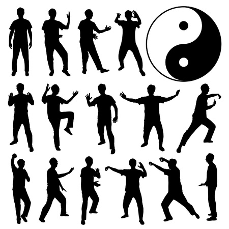 Martial Art Kung Fu Tai Chi Self Defense Exercise Fight Master People Man Stock Vector - 18809669