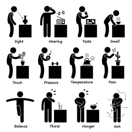 olfato: Human Senses Figura Stick Pictograma Iconos