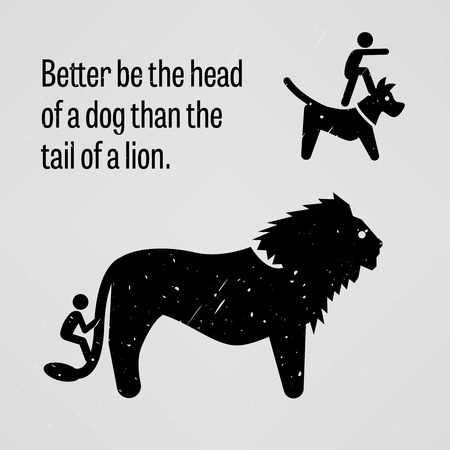 lion dog: Better be the Head of a Dog Than the Tail of a Lion