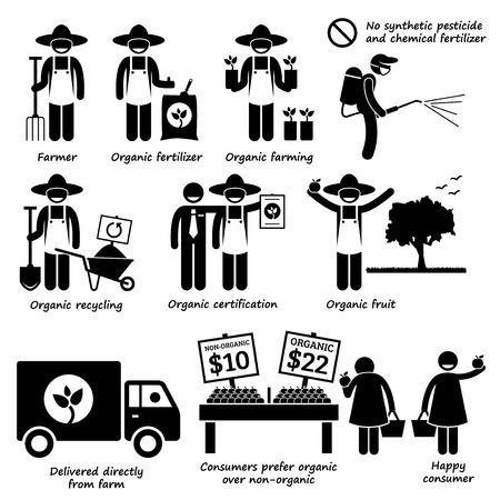 strichmännchen: Ökologische Landwirtschaft Gemüsefrüchte Stock-Zahl Piktogramm Icons
