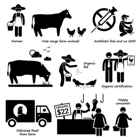 Natürliche Bio-Lebensmittel Fleisch Rind Huhn Geflügel Strichmännchen-Piktogramm Icons