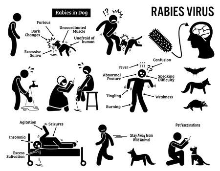 인간과 동물의 막대기 그림 픽토그램 아이콘에서 광견병 바이러스