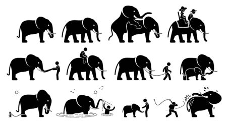 Human and elephant pictograms icons. Illustrations depict relationship, interactions, and activities between people and elephant.