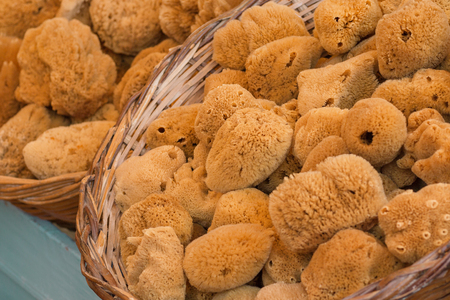 Natural yellow and brown bath sponges at local market in Symi island, Greece. Selective focus 스톡 콘텐츠