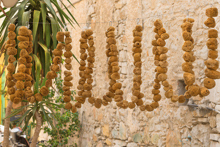 Natural yellow and brown bath sponges at local market in Symi island, Greece.