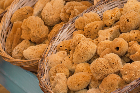 Natural yellow and brown bath sponges at local market in Symi island, Greece. Selective focus Stock Photo