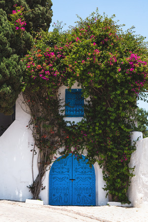 Traditional blue doors and windows on the white houses on the streets of Sidi Bou Said. Tunisia.