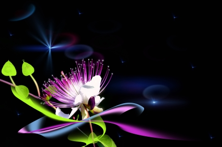 A fairy flower  A natural flower in cosmic space Stock Photo