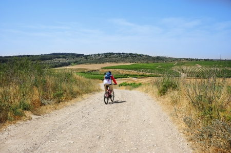 Mountain bike trip through fields and vineyards of Israel. Views of the countryside.