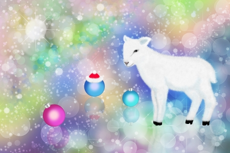 White lamb and colorful bokeh. Holiday cards for Christmas.