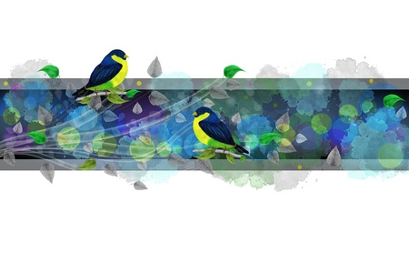 Bright border with painted birds and leaves. White background and bright colors. Stock Photo - 16808050