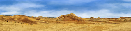 judean hills: Beautiful landscape of the Judean Desert. Yellow and red hills and blue sky. Panorama.