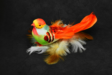 Beautiful artificial orange bird on natural bird feathers.
