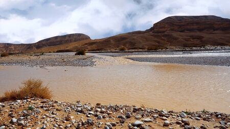 Dirty water flows in the Negev desert after rain.