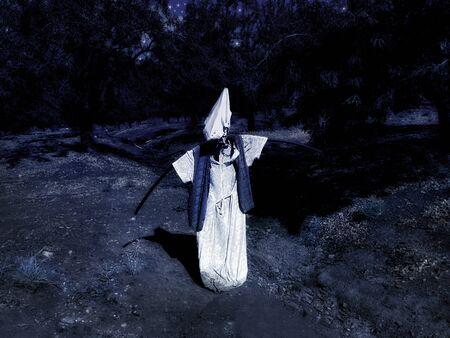 Scarecrow in the moonlight in the night garden.