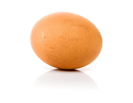 one egg isolated over a white background photo
