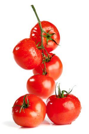 Zweig der Tomate isoliert über weißem Hintergrund Standard-Bild - 4811910