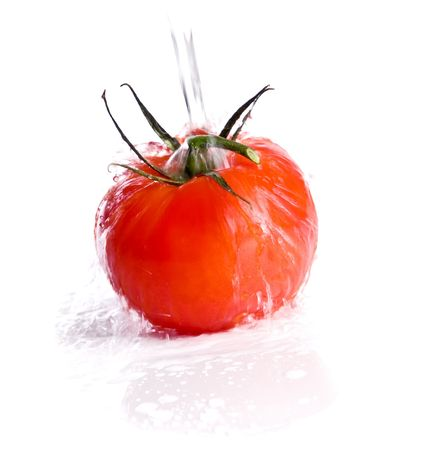 tomato isolated over white background photo