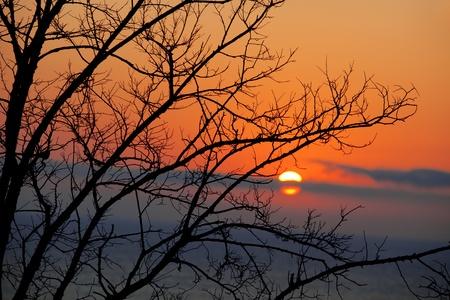 summer sunrise photo
