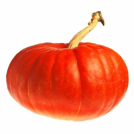 samhain: calabaza