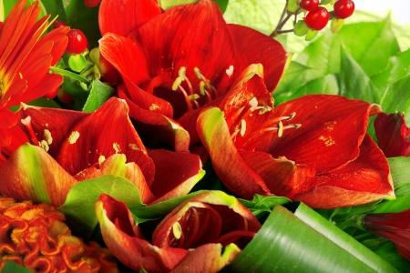 Zusammensetzung Rose, Gerbera, Orchideen und Anthurien Standard-Bild - 18279138