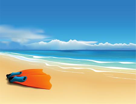 fins: Orange fins on the beautiful beach.