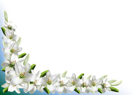 Greeting card, or wedding invitation, with white lilies.