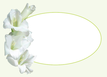 stamen: Greeting card, or wedding invitation, with white gladiolus