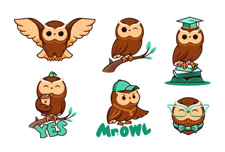 Set of cute owls in vector. Collection bird  , cartoon character,   badges, labels, stickers, emblems. Illustration, flat, line art, creative Vettoriali