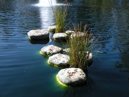 murky: Stepping Stones