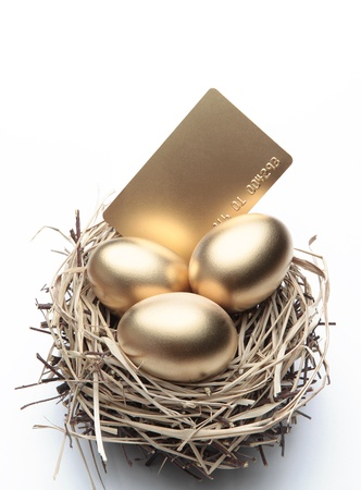 business symbols and metaphors: Three Golden Eggs in the Nest with Credit Card