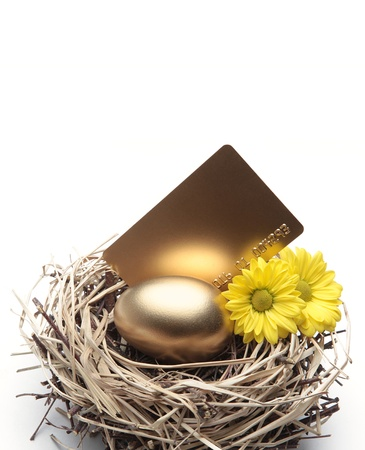 Golden Egg in the Nest with Credit Card and Flowers photo
