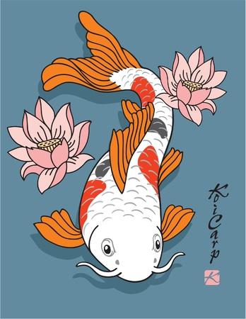 pez carpa: Oriental de pescado - la carpa de Koi - con flores de loto