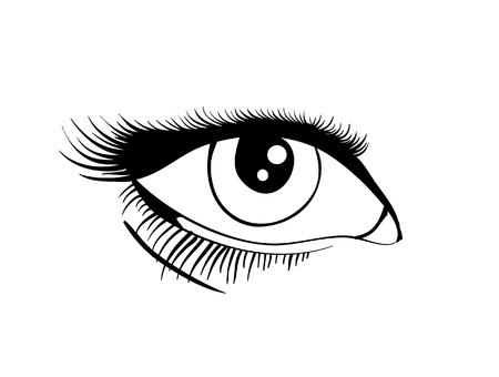 Beautiful female eye. Vector illustration EPS8 Stock Vector - 10352538