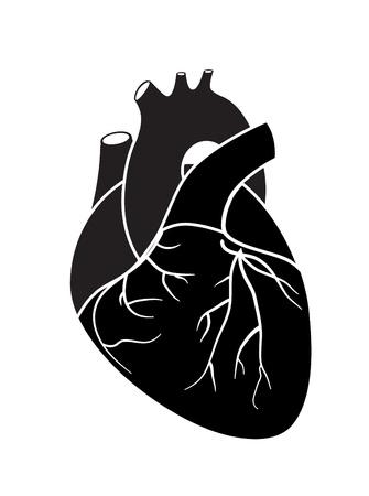 ventricle: Coraz�n icono Vectores