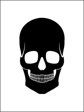 Illustration of a human skull Stock Vector - 15000457