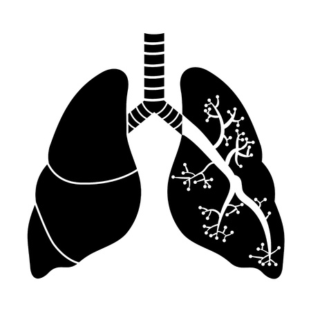 Lungs in Black and White   Illustration