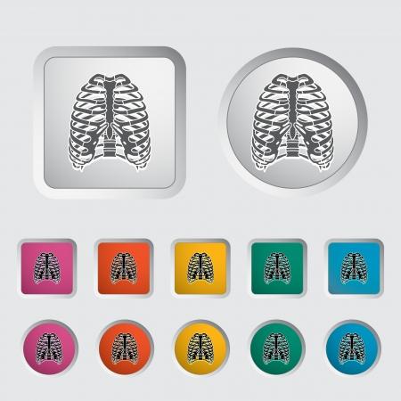 chest pain: Icon of human thorax. Vector illustration. Illustration