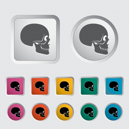 Anotomy skull icon  Vector illustration  Stock Vector - 16785556