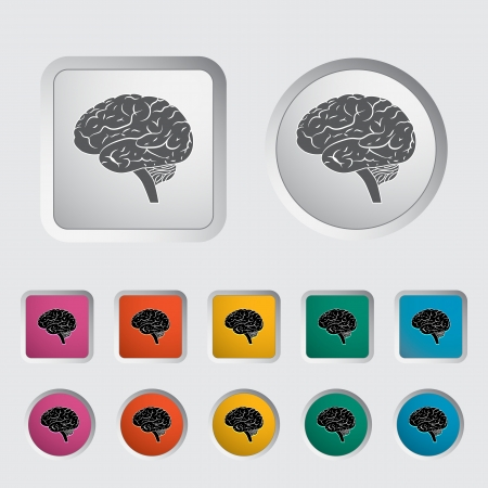 Vector illustration of a human brain    Stock Vector - 17304193