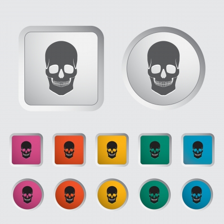 Anotomy skull icon  Vector illustration Stock Vector - 17304383