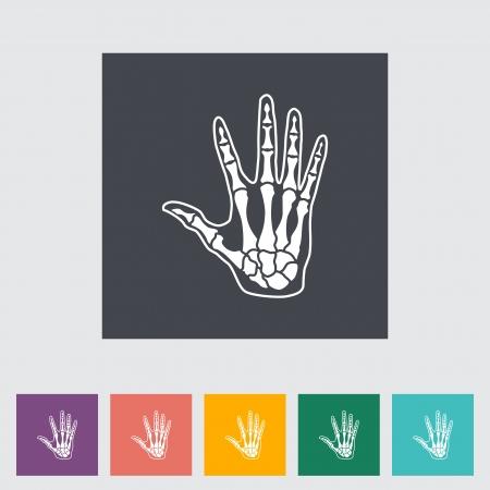 phalanx: Anatomia icona piatto mano. Illustrazione di vettore. Vettoriali